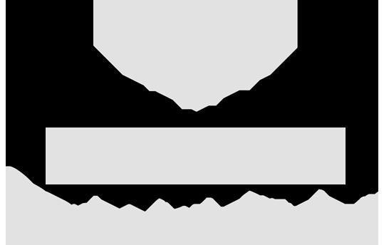 Levini_Logo_Homepage3n3
