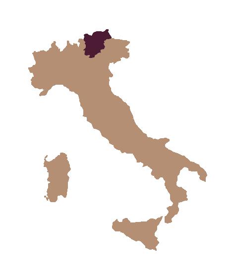 Region_Südtirol